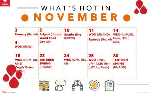 What's Hot in November